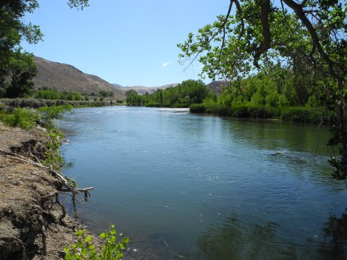 McCarran Ranch Preserve, Truckee River, Nature Conservancy, Nevada