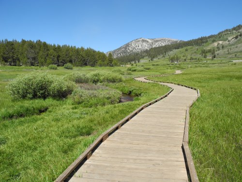 Tahoe Meadows Interpretive Loop Trail