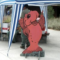 Fall Fish Festival, Taylor Creek Visitor Center, Lake Tahoe