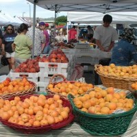 Farmers markets, Reno, Sparks, northern Nevada, NV