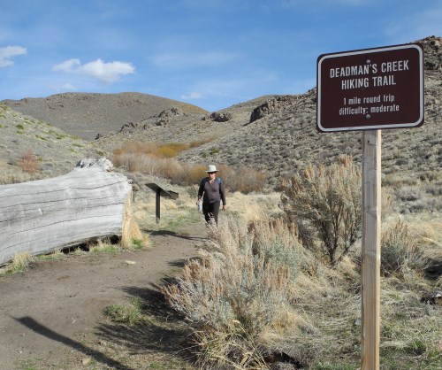 Deadman's Creek Trail at Washoe Lake State Park, Nevada
