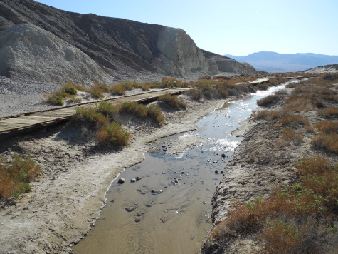 Salt Creek, Death Valley National Park, California, CA