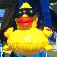 Duck Race and Festival, Nevada Humane Society, Reno